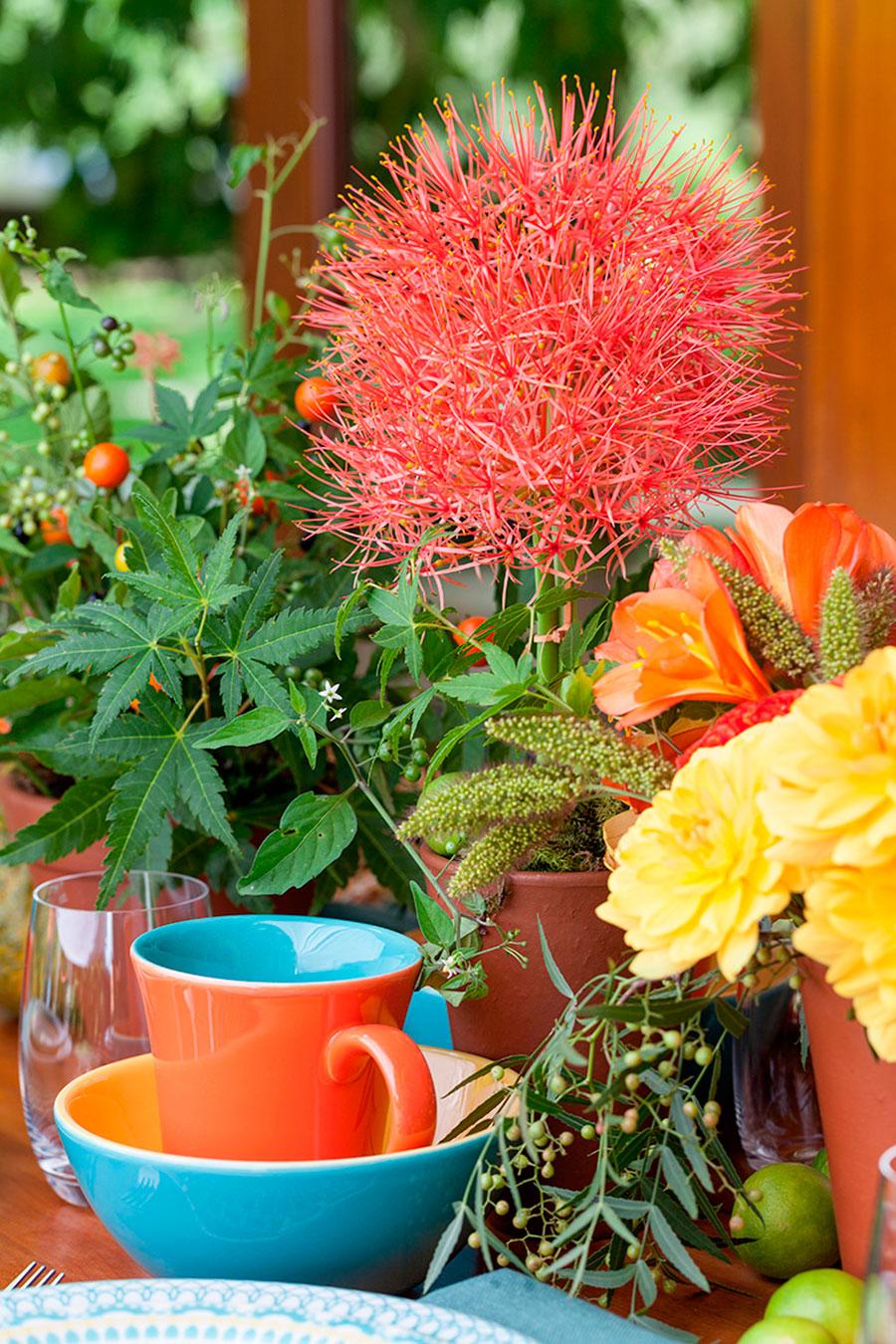 mesa de cafa da manha oxford porcelanas 5