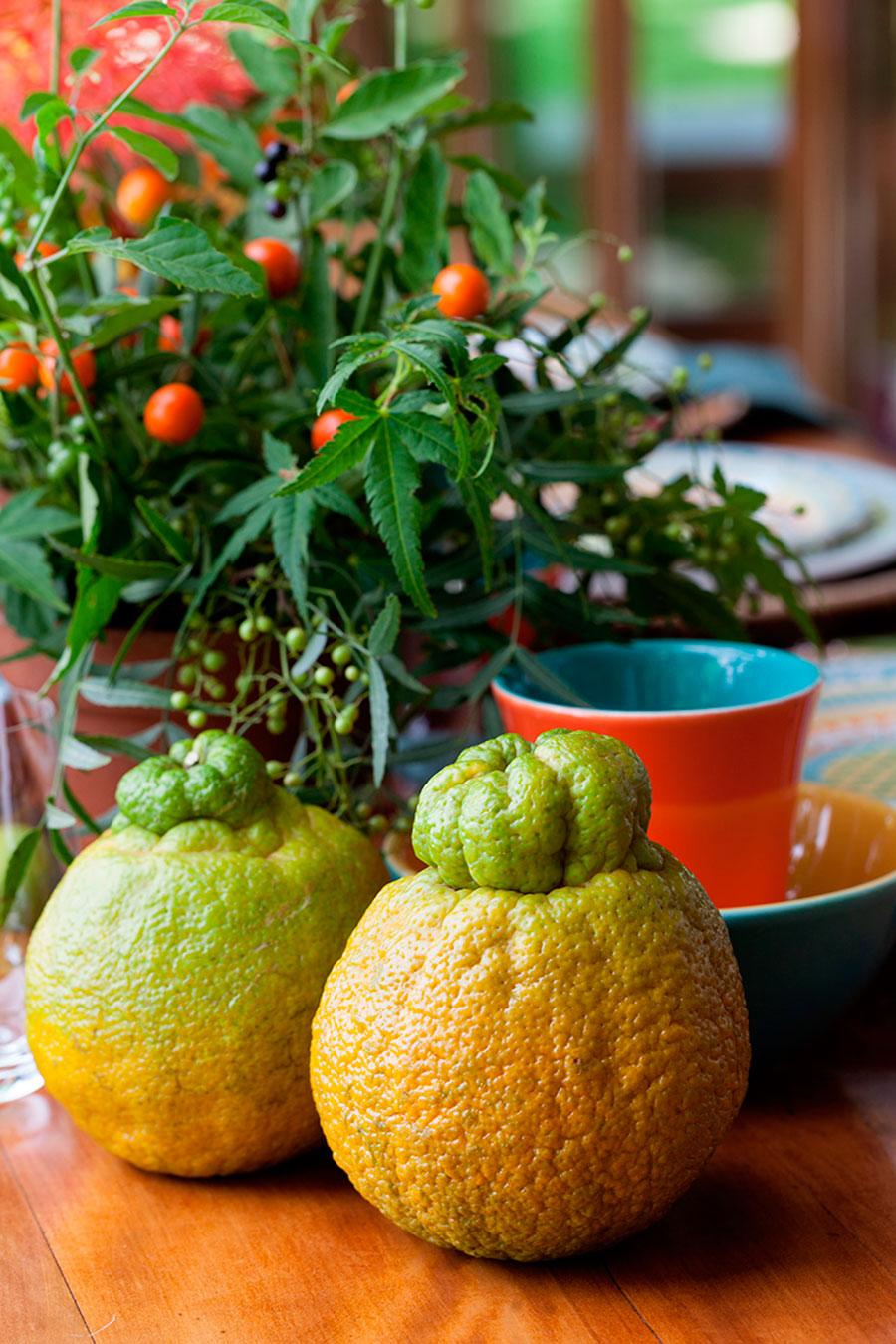 mesa de cafa da manha oxford porcelanas 6